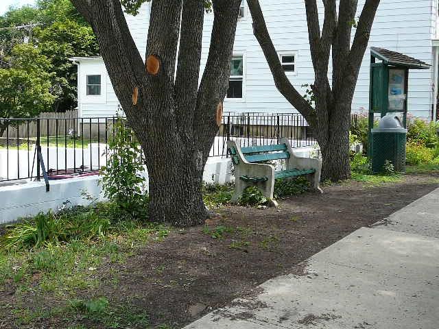 Mini-Park 2007: Prior to Revitalization