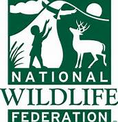 National Wildlife Federation Logo in Color